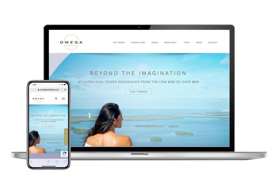 Omega Website design