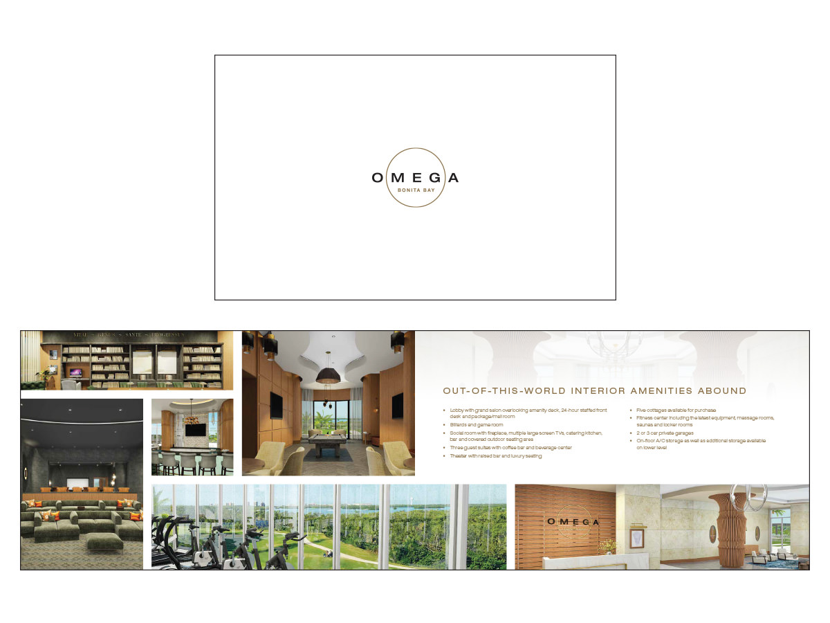 Omega - Brochure Design - Naples, Florida