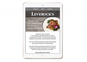 Leverock's Email Template Design - Southwest Florida