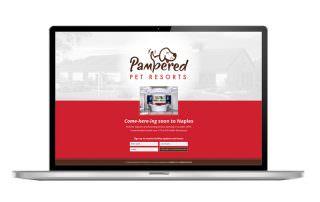 Web Design Agency South Florida